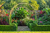 ULTING WICK, ESSEX: GRAVEL PATH, ARCH, DAHLIAS, BANANAS, IPOMOEA KINOLAS BLACK, EXOTIC, BARN, GARDEN, FORMAL, BOX HEDGING, EDGED BEDS, HEDGES