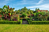 ULTING WICK, ESSEX: GRAVEL PATH, ARCH, DAHLIAS, BANANAS, IPOMOEA KINOLAS BLACK, EXOTIC, BARN, GARDEN, FORMAL, BOX HEDGING, EDGED BEDS, HEDGES, LAWN, CANNAS
