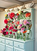 GREEN AND GORGEOUS FLOWERS, OXFORDSHIRE: BLUE DRESSER WITH CONSTANCE SPRY VASES, VASES WITH DAHLIAS IN MULTI COLOURS. ARRANGEMENTS, STILL LIFE