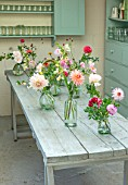GREEN AND GORGEOUS FLOWERS, OXFORDSHIRE: TABLE ARRANGEMENT IN FLOWER ROOM OF GLASS VASES FOR WEDDING ALONG GREY, BLUE TABLE - DAHLIAS, FALL, AUTUMN, BLOOMING, BULBS
