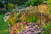 PETRA HOYER MILLAR GARDEN, OXFORDSHIRE: CASTLE END HOUSE - SEDUM AUTUMN JOY, SANGUISORBA, EUPATORIUM, PHLOX JEANA, STIPA TENUISSIMA