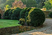 PETRA HOYER MILLAR GARDEN, OXFORDSHIRE: CASTLE END HOUSE - FRONT GARDEN, DRIVE, YEW HEDGING, HEDGES, CLOUD PRUNED TOPIARY, CLIPPED, TAXUS, BOUNDARY, BOUNDARIES