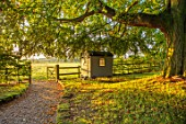 MITTON MANOR, STAFFORDSHIRE: PATH, GATE, TREE, SHEDS, SUMMERHOUSE, OFFICE, LAWN, SUNRISE, COUNTRY, GARDEN, ENGLISH, LAWN