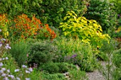 THE PICTON GARDEN AND OLD COURT NURSERIES, WORCESTERSHIRE: BORDERS, HELENIUM CHIPPERFIELD ORANGE, CATALPA BIGNONOIDES AUREA, SEPTEMBER, FALL