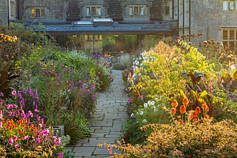 GRAVETYE_MANOR_SUSSEX_MORNING_LIGHT_LAWN_BORDERS_SEPTEMBER_DAHLIA_MAGENTA_STAR_WHITE_COSMOS_CANNAS_K