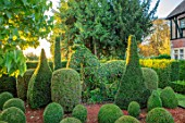 EYTHROPE WALLED GARDEN, BUCKINGHAMSHIRE: THE TOPIARY GARDEN, GREEN, GARDENS, OCTOBER, CLIPPED EVERGREENS, IVY, BOX, BUXUS