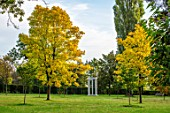 MORTON HALL, WORCESTERSHIRE: MONOPTEROS IN PARK, YELLOW LEAVES OF TREES - FRAXINUS EXCELSIOR JASPIDEA, TREES, OCTOBER, FALL, AUTUMN
