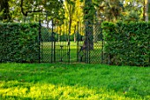 MORTON HALL, WORCESTERSHIRE: HEDGES, BLACK, METAL, GATES, TREES, OCTOBER, FALL, AUTUMN