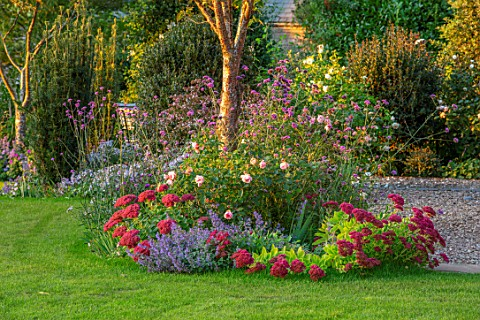 MORTON_HALL_WORCESTERSHIRE_WEST_GARDEN_BORDERS_LAWN_FALL_AUTUMN_SEDUM_SPECTABILE_HERBSTFREUDE_NEPETA
