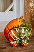 FORDE ABBEY, SOMERSET: CLOSE UP OF HARVESTED ORANGE PUMPKIN TURKS TURBAN, EDIBLES, FALL, AUTUMN, OCTOBER