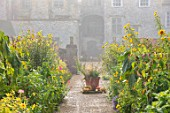 FORDE ABBEY, SOMERSET: THE KITCHEN GARDEN IN AUTUMN, FALL, OCTOBER, MIST, FOG, BORDERS, TERRACOTTA CONTAINER