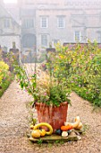 FORDE ABBEY, SOMERSET: THE KITCHEN GARDEN IN AUTUMN, OCTOBER, FALL, MIST, FOG, BORDERS, GOURDS, TERRACOTTA CONTAINER, PATHS