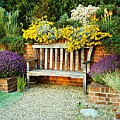 FRAGRANT BENCH IN BRICK ALCOVE SURROUNDED BY HELICHRYSUM ITALICUM AND LAVENDER. THE OLD VICARAGE  NORFOLK.