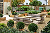 DESIGNER ANTHONY PAUL: SMALL, TOWN, FORMAL, GARDEN, SEATING, CLIPPED, TOPIARY, BOX, BALLS, SCULPTURE, TREE FERN, DICKSONIA ANTARCTICA, GRAVEL, LONDON