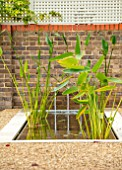 DESIGNER ANTHONY PAUL: SMALL, TOWN, FORMAL, GRAVEL, WATER FEATURE, POOL, POND, CANAL, LONDON, WALL, TRELLIS