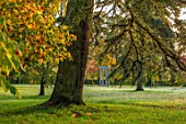 MORTON HALL GARDENS, WORCESTERSHIRE: CEDAR AND MONOPTEROS IN AUTUMN. FALL, FOLIAGE, AUTUMNAL, TREES, PARKLAND