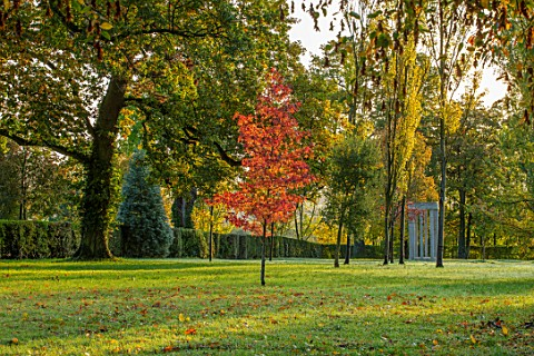 MORTON_HALL_GARDENS_WORCESTERSHIRE_AUTUMN_COLOUR_IN_THE_PARK_WITH_RED_FOLIAGE_OF_LIQUIDAMBAR_STYRACI