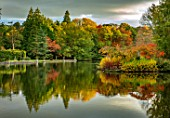THORP PERROW ARBORETUM, YORKSHIRE: FALL, TREES ACROSS THE LAKE IN AUTUMN. LAKES, WATER, EVENING LIGHT, REFLECTIONS, REFLECTED