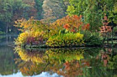 THORP PERROW ARBORETUM, YORKSHIRE: AUTUMN COLOUR ACROSS THE LAKE IN AUTUMN. TREES, LAKES, WATER, EVENING LIGHT, REFLECTIONS, REFLECTED