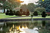 THORP PERROW ARBORETUM, YORKSHIRE: CLIPPED TOPIARY YEW ACROSS THE LAKE IN AUTUMN. TREES, LAKES, WATER, MORNING LIGHT, REFLECTIONS, REFLECTED
