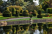 THORP PERROW ARBORETUM, YORKSHIRE: CLIPPED TOPIARY YEW ACROSS THE LAKE IN AUTUMN. TREES, LAKES, WATER, REFLECTIONS, REFLECTED