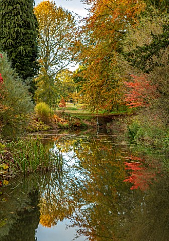 THORP_PERROW_ARBORETUM_YORKSHIRE_POOL_POND_LAKE_WITH_HERON_SCULPTURE_AND_AUTUMN_COLOUR_OF_JAPANESE_M