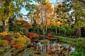 MORTON HALL, WORCESTERSHIRE: AUTUMN, FALL: STROLL GARDEN, LOWER POND, POOL, WATER, REFLECTED, REFLECTIONS, HAKONECHLOA MACRA, ACER PALMATUM SEIRYU, MAPLES, JAPANESE, BIRCHES