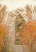 THE OLD RECTORY, QUINTON, NORTHAMPTONSHIRE: DESIGNER ANOUSHKA FEILER: WINDOW IN WALL, MISCANTHUS SINENSIS KLEINE FONTAINE, PATIOS, GRASSES, AUTUMN, FALL