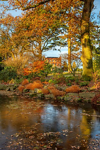 MORTON_HALL_GARDENS_WORCESTERSHIRE_THE_HALL_FROM_THE_STROLL_GARDEN_WINTER_HAKONECHLOA_MACRA_ACER_MAP