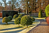 DRUMMOND CASTLE GARDENS, SCOTLAND: LAWN, FROST, FROSTY, CASTLES, CLIPPED, TOPIARY, SHAPES, GARDENS, SCOTTISH, WINTER, HEDGES, HEDGING, SUNRISE, PATH, ARBUTUS