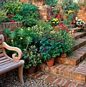 WOODEN BENCH BY FLIGHT OF BRICK STEPS FLANKED BY CONTAINERS OF SUMMER BEDDING PLANTS. DESIGNERS: RICHARD & JO PASSMORE