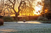 ST TIMOTHEE, BERKSHIRE - LAWN, POOL, POND, LAKE, WATER, SUNRISE, WILLOW, DAWN, PAMPAS GRASS