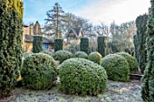 BRYANS GROUND, HEREFORDSHIRE - CLIPPED TOPIARY IN THE SUNK GARDEN, HEDGES, HEDGING, FROST, FROSTY, WINTER, IRISH YEWS, FORMAL