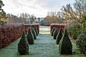 BRYANS GROUND, HEREFORDSHIRE: THE DOVECOTE GARDEN - EIGHT CLIPPED YEW TOPIARY OBELISKS, HA HA, VIEW OUT TO COUNTRYSIDE, ENGLISH, GARDEN, BEECH, HEDGES, HEDGING, FROSTY