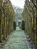 BRYANS GROUND, HEREFORDSHIRE: WINTER, FROST, FROSTY, AVENUE OF PLEACHED, LIMES, TILIA PLATYPHYLLOS RUBRA, PATH, FOLLY, FOLLIES, FORMAL, COUNTRY GARDEN, FROST, FROSTY