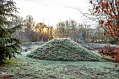 BRYANS GROUND, HEREFORDSHIRE: WINTER, VIEWING MOUND, LAKE, POOL, POND, BULLRUSHES, COUNTRY GARDEN, FROST, FROSTY