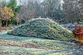 BRYANS GROUND, HEREFORDSHIRE: WINTER, VIEWING MOUND, COUNTRY GARDEN, FROST, FROSTY