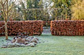 BRYANS GROUND, HEREFORDSHIRE: LAWN, FROST, FROSTY, WINTER, JANUARY, GARDEN, ORNAMENT, FORMAL, HEDGING, HEDGES, BEECH