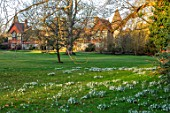 EYTHROPE, WADDESDON, BUCKINGHAMSHIRE: PARKLAND IN JANUARY WITH WALLED GARDEN BEHIND. ROTHSCHILD, WINTER, SNOWDROPS