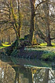 EYTHROPE, WADDESDON, BUCKINGHAMSHIRE: LAKE, WATER, REFLECTED, REFLECTIONS, GROTTO, SNOWDROPS, PARKLAND, TREES, WINTER, JANUARY, GALANTHUS