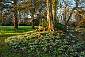 EYTHROPE, WADDESDON, BUCKINGHAMSHIRE: GROTTO, SNOWDROPS, PARKLAND, TREES, WINTER, JANUARY, GALANTHUS, LAKE