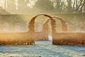 CHIPPENHAM PARK, CAMBRIDGESHIRE: THE WALLED GARDEN, BEECH HEDGES, ARCHES, FROSTED LAWN, WINTER, JANUARY, FROSTY, DAWN, SUNRISE: