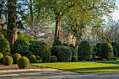 MORTON HALL GARDENS, WORCESTERSHIRE: CLIPPED TOPIARY BOX BALLS, AMELANCHIER PRINCES DIANA,  LAWN, SPRING, APRIL, BUXUS