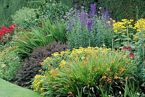 HERBACEOUS_BORDER_WITH_CROCOSMIA__ACONITUM_AND_BERBERIS_THUNBERGII_AT_ARLEY_HALL__CHESHIRE