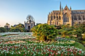 ARUNDEL CASTLE GARDENS, WEST SUSSEX: LABYRINTH OF TULIPS AND DAFFODILS - TULIPA PURPLE DREAM, TULIPA RED APELDOORN, NARCISSUS THALIA, SPRING, APRIL, BULBS, LAWNS