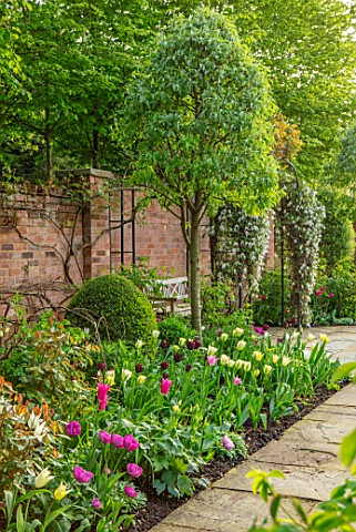 MORTON_HALL_GARDENS_WORCESTERSHIRE_THE_SOUTH_GARDEN_LAWN_BORDER_WITH_TULIPS_SPRING_APRIL_WALLED_GARD