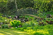 HALL O TH WOOD, CHESHIRE: POOL, POND, WATER, SPRING, BOG, GARDEN, BRIDGES, DARMERA PELTATA, ACANTHUS, LIGULARIA, LYSICHITON, SHADE, SHADY