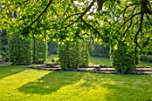 HALL O TH WOOD, CHESHIRE: POOL, POND, WATER, SPRING, SHADE, SHADY, AVENUE OF CARPINUS, GREEN, LAWN, RILL, WATER FEATURE
