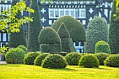 HALL O TH WOOD, CHESHIRE: HOUSE, LAWN, SPRING, APRIL, CLIPPED, TOPIARY, SHAPES, GREEN, YEW, TAXUS