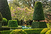 HALL O TH WOOD, CHESHIRE: SPRING, APRIL, CLIPPED, TOPIARY, SHAPES, GREEN, YEW, TAXUS
